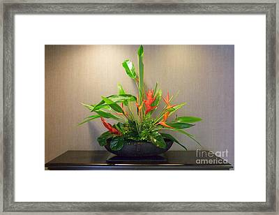 Tropical Arrangement Framed Print by Mary Deal