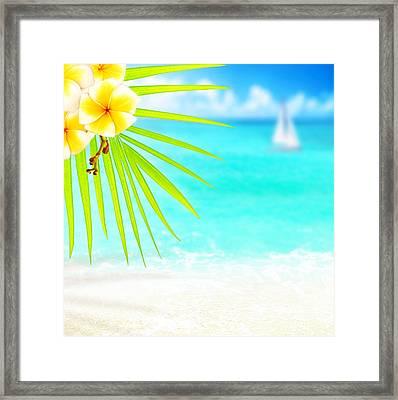 Tropical Beach Border Framed Print by Anna Om