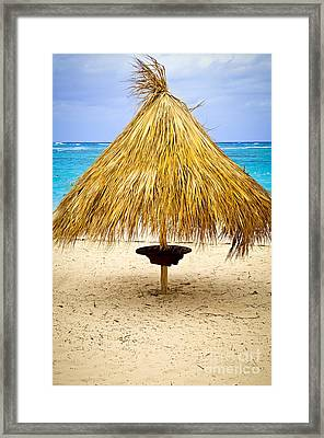 Tropical Beach Umbrella Framed Print by Elena Elisseeva