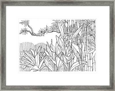 Tropical Blend Framed Print