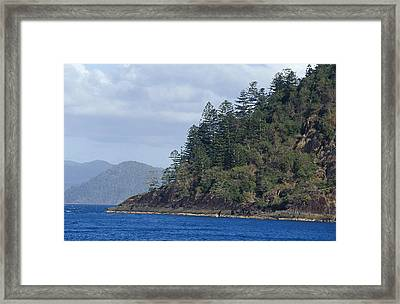 Tropical Forest Covers An Escarpment Framed Print by Jason Edwards