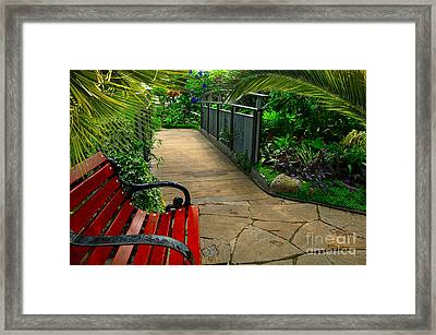 Tropical Garden Pathway Framed Print