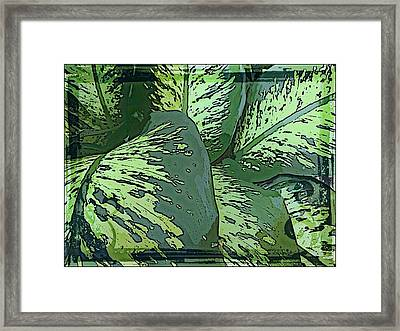 Tropical Green Framed Print by Mindy Newman