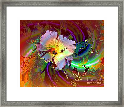 Tropical Hibiscus Explosion Framed Print by Doris Wood