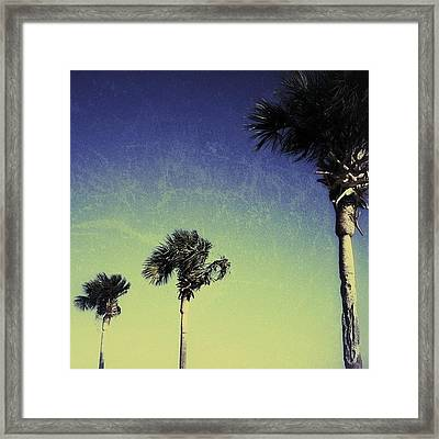 #tropical #miami Framed Print
