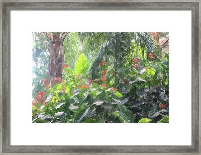 Framed Print featuring the photograph Tropical Paradise by Donna  Smith