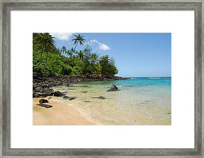 Framed Print featuring the photograph Tropical Paradise by Lynn Bauer