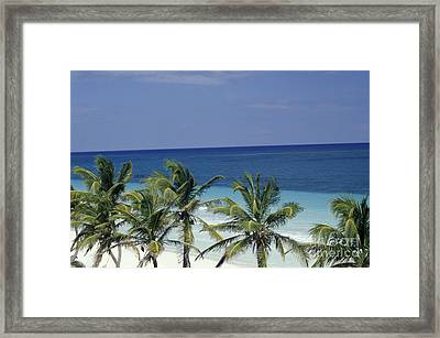 Framed Print featuring the photograph Tropical Paradise Sian Kaan Mexico by John  Mitchell