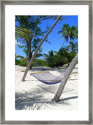 Tropical R And R Framed Print by Carla Parris