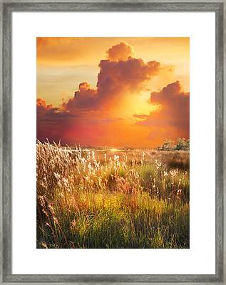 Tropical Savannah Framed Print by Francesa Miller