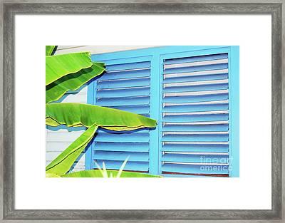 Tropical Shutters Framed Print by Debbi Granruth