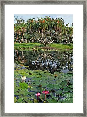 Framed Print featuring the photograph Tropical Splendor by Larry Nieland