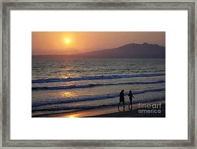 Tropical Stroll Framed Print
