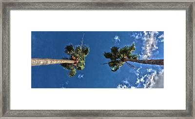 Tropical Twins Framed Print