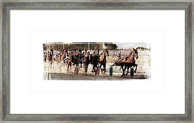 Framed Print featuring the photograph Trotting 3 by Pedro Cardona