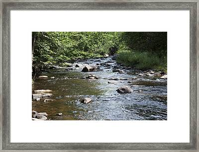 Trout River Framed Print by George Hawkins