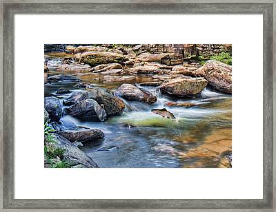 Framed Print featuring the digital art Trout Stream by Mary Almond