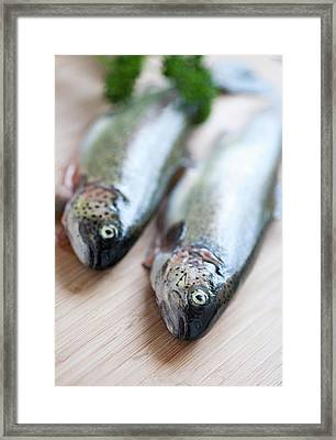 Trouts Framed Print