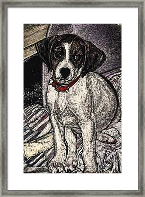 Trudy May The Puppy Framed Print by Robert Goudreau