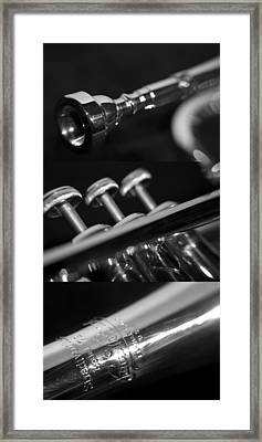Trumpet II Framed Print by Paul Sisco