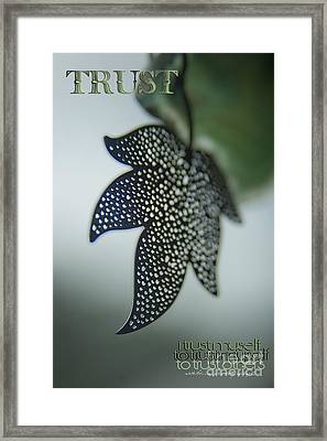 Trust To Trust Framed Print by Vicki Ferrari Photography