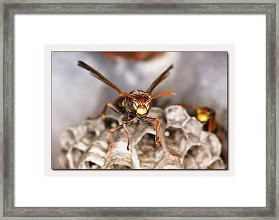 Framed Print featuring the digital art Try Me 01 by Kevin Chippindall