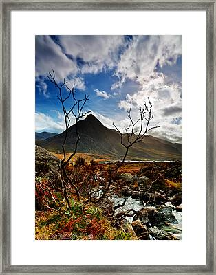 Tryfan And Tree Framed Print