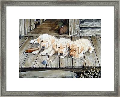 Tuckered Out Trio  Sold  Prints Available Framed Print