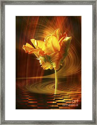 Tulip In Movement Framed Print