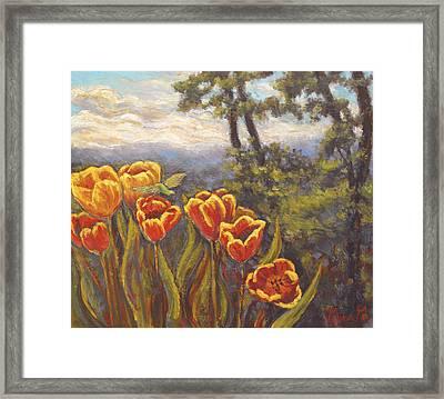 Tulip Vista Framed Print