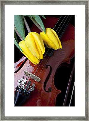 Tulips And Violin Framed Print by Garry Gay