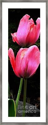 Framed Print featuring the digital art Tulips by Glenna McRae
