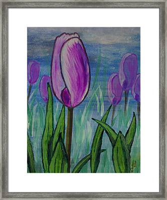 Tulips In The Mist Framed Print by Mick Anderson