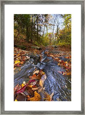 Tumbling Leaves Framed Print by Debra and Dave Vanderlaan