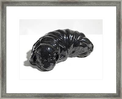 Tumor Puppy Framed Print by Stephanie Smith