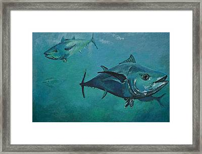 Tuna School Framed Print by Terry Gill