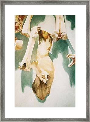 Turkey Bone Thugs N' Harmony Framed Print by Gina Riva