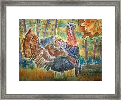 Turkey In Fall Framed Print by Belinda Lawson