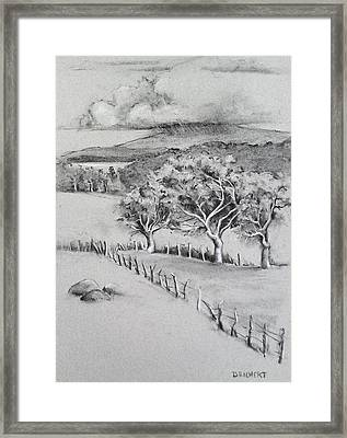 Turpentine Trees And The Big Island Framed Print by Barbara Richert