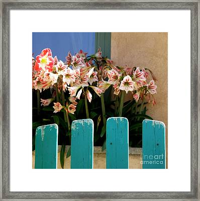 Turquoise Garden Gate Framed Print by Lainie Wrightson