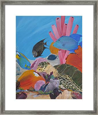 Turtle And Friends Framed Print by Barbara Petersen