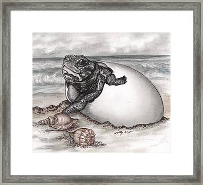 Turtle Beach Framed Print by Kathleen Kelly Thompson
