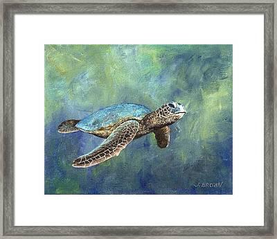 Turtle Crush Framed Print