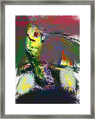 Turtle Framed Print by James Thomas