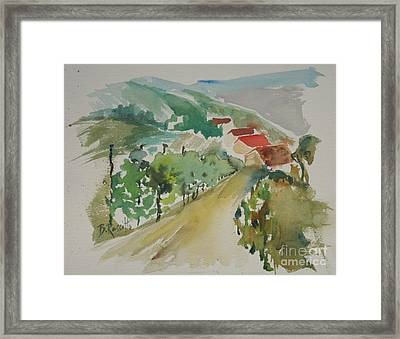 Tuscan Vineyard Framed Print