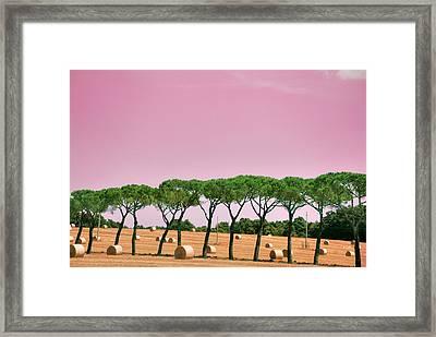 Tuscany Maremma Countryside Framed Print by (c)paolodelpapa