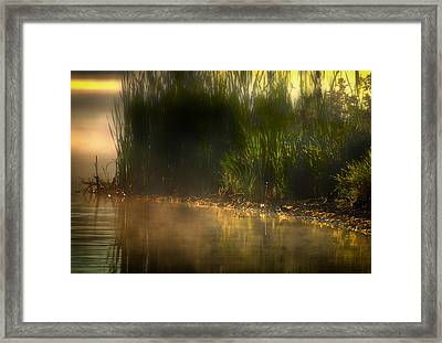 Tweet Tweet And Think Of Me Framed Print by Gary Smith