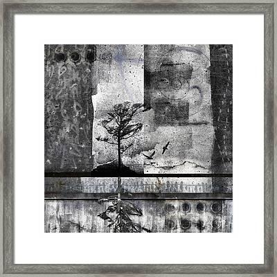 Twelve Moons Framed Print by Carol Leigh