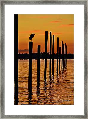 Twelve Poles At Sunset Framed Print by Lynda Dawson-Youngclaus