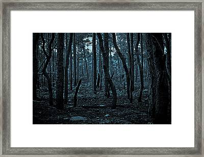 Framed Print featuring the photograph Twilight In The Smouldering Forest by DigiArt Diaries by Vicky B Fuller